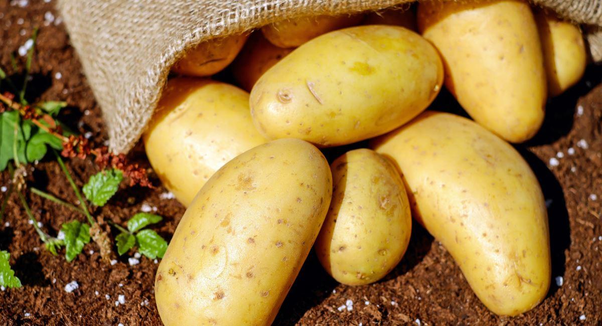 Le proprietà nutrizionali delle patate