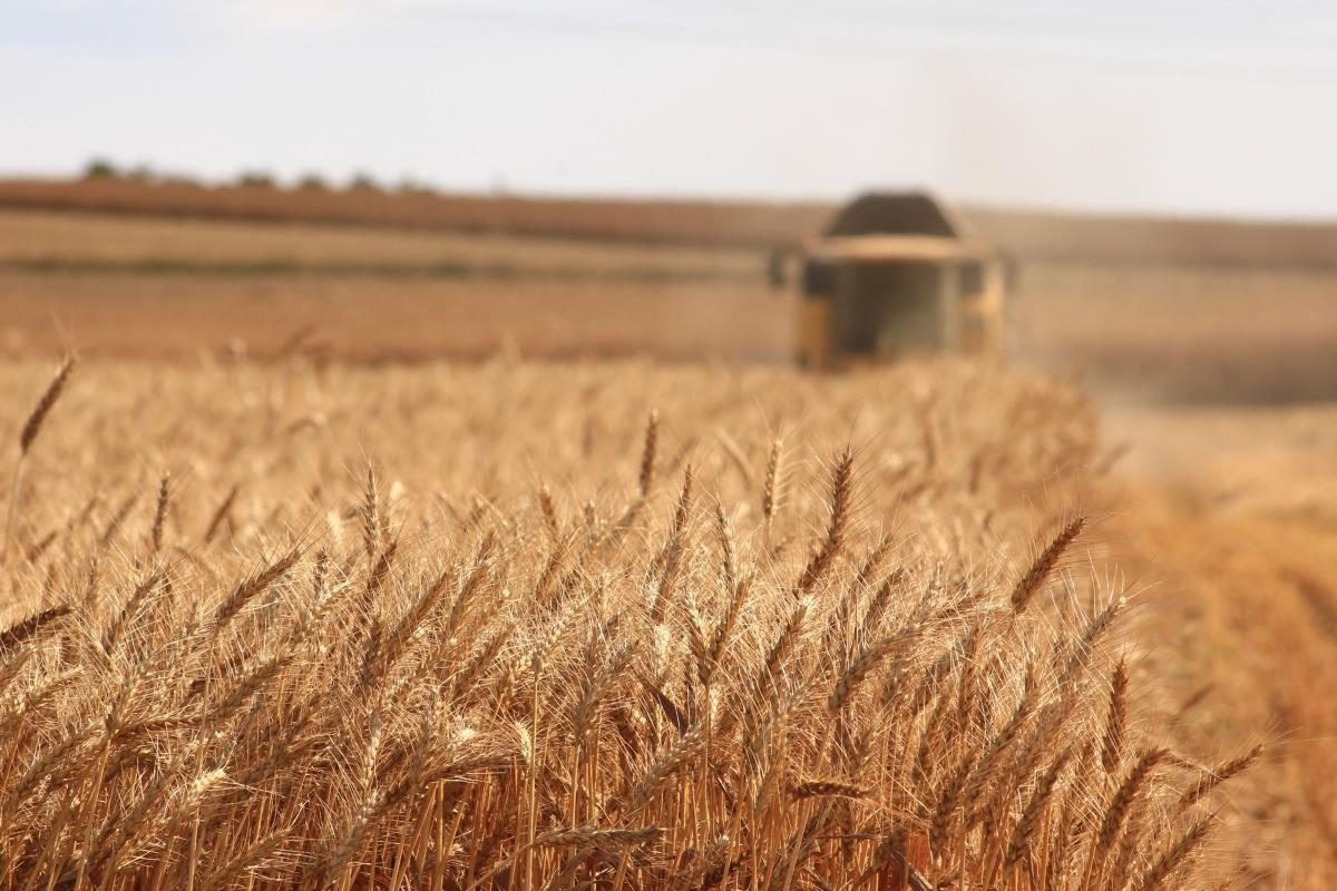 Accordo tra Carrefour e Coldiretti per promuovere il Made in Italy