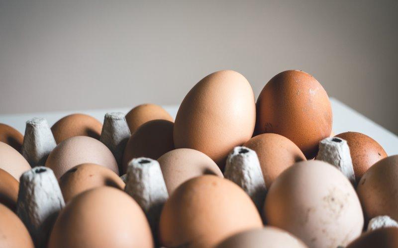 Come si conservano le uova?