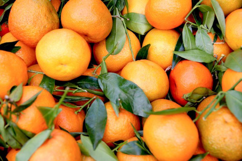 Mandarini, mandaranci o clementine?