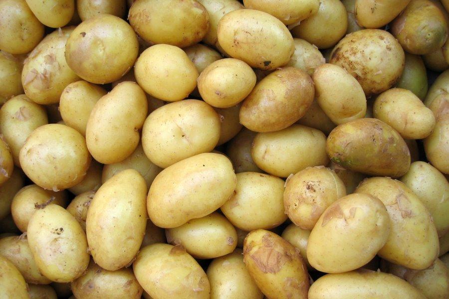 Riscaldare le patate al microonde
