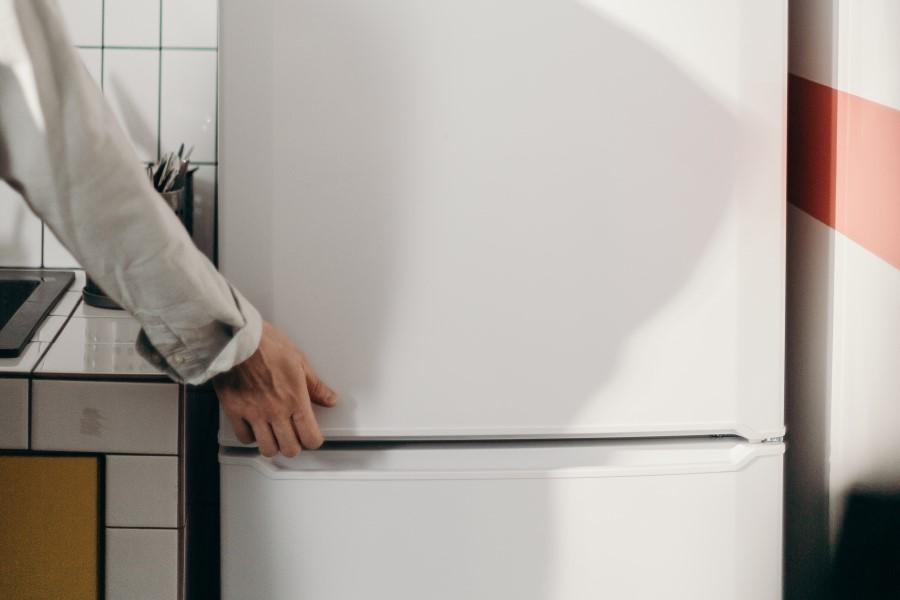 Porta del frigorifero