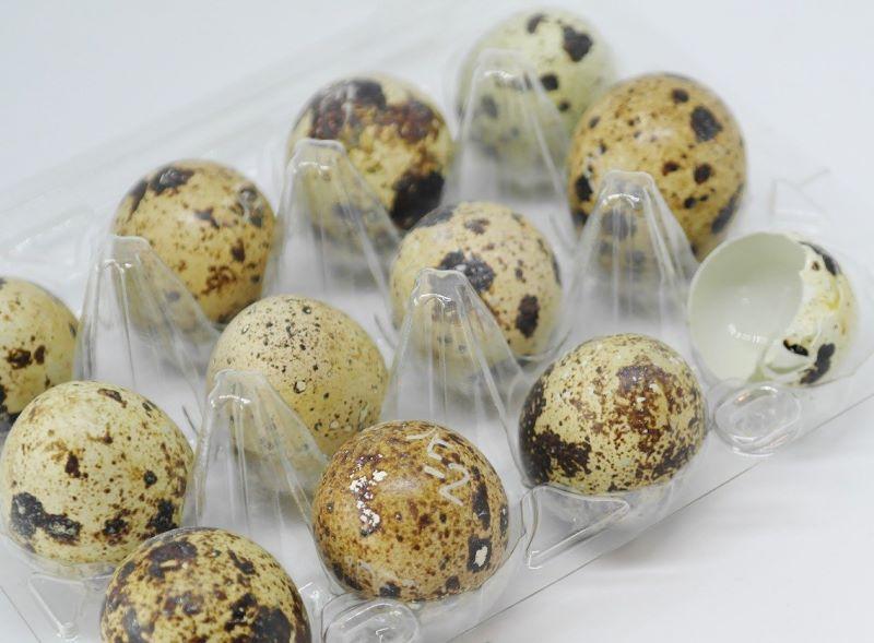 Confezione di uova di quaglia