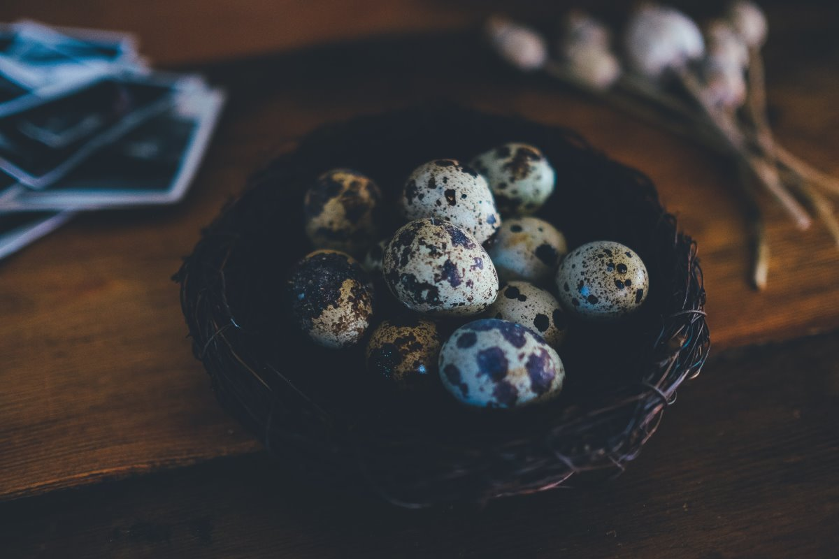 Uova di quaglia: proprietà, benefici e controindicazioni