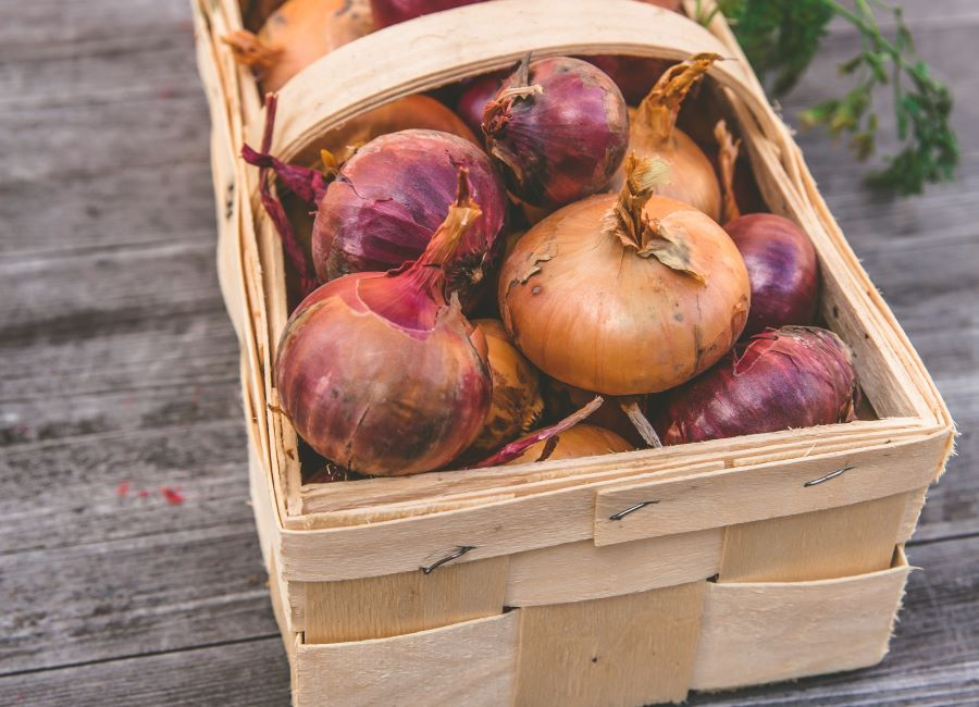 Conservare le cipolle fresche intere