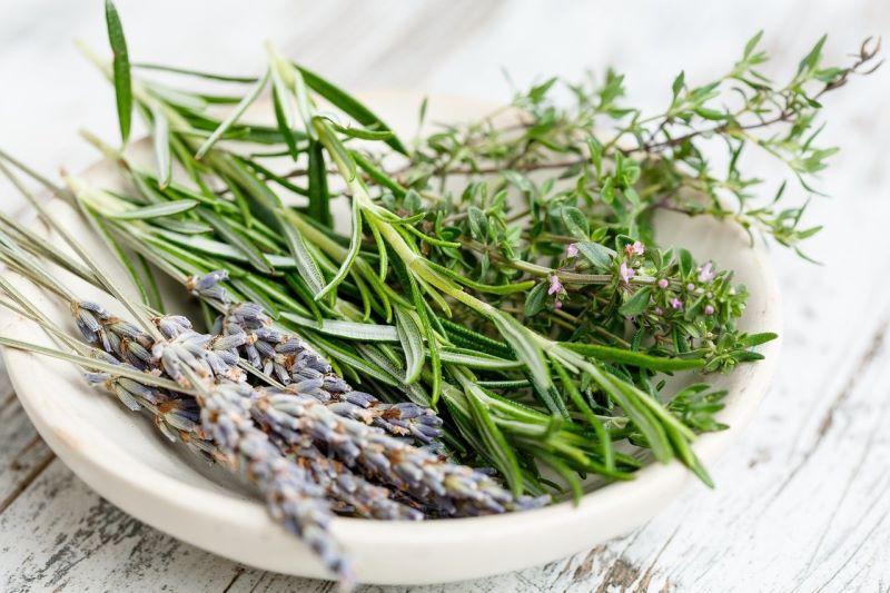 Timo e altre erbe aromatiche
