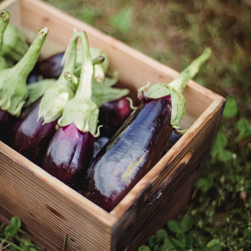 Cibi senza nichel: verdure