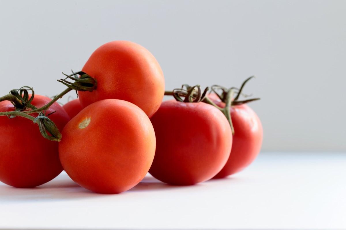 Tipi di pomodoro, tutte le varietà diffuse in Italia