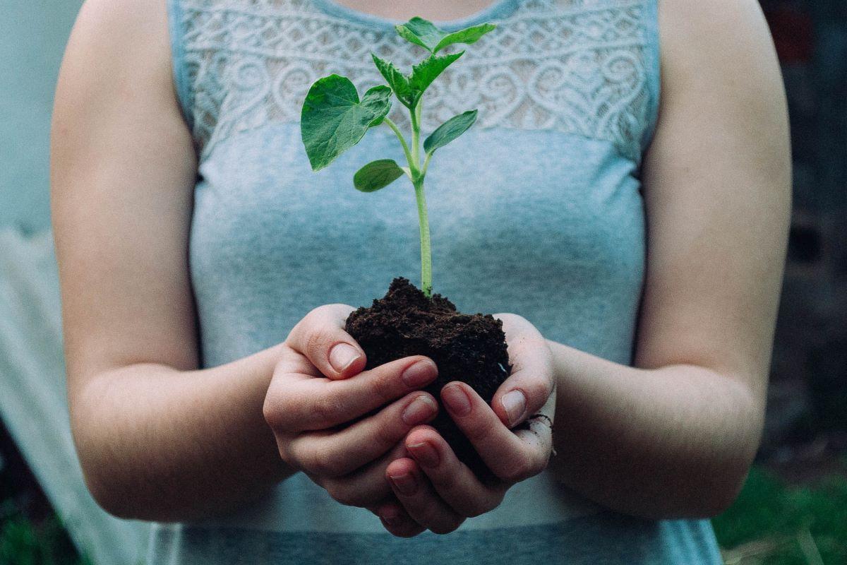 REset Plastic, la nuova strategia Lidl per imballaggi eco-sostenibili