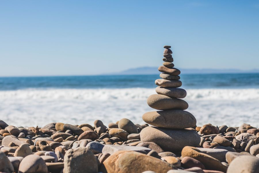 Equilibrio organismo